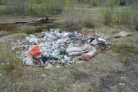 Экологический десант 2012